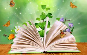 Beautiful magic book
